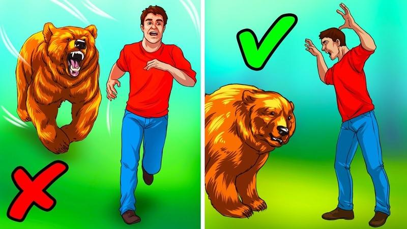 Was zu tun ist wenn du einen Bären siehst