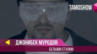 Джонибек Муродов - Белыми стаями / Jonibek Murodov - Belimi Stayami (2013)
