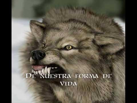 Aint Your Fairytale - Sonata Arctica (Subtitulos Español)