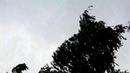 Летняя гроза в Гатчине.Антонио Вивальди в современной обработке.
