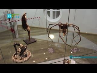 Необычная выставка открылась в Архангельске