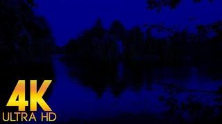 Ночное Озеро для Крепкого Сна, Пение Соловья, Звуки Сверчков 4K Ultra HD