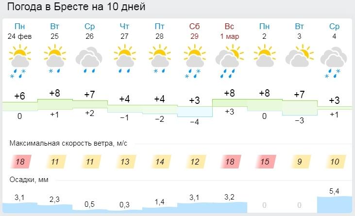 Календарная зима закончится в Бресте аномально теплой погодой