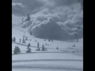 Lawinenabstieg in UTAH (USA).Auf einem Hügel in der Nähe des Millcreek Canyon fegte 8 Skifahrer weg.