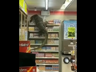 Video by Наука.Inc