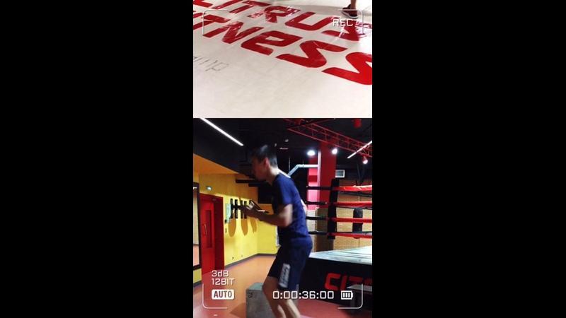 Круговая тренировка classic of boxing