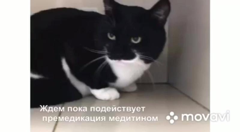 PV_Video_1581499639758_HD.mp4