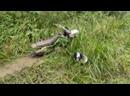 Грязевая эндуро покатушка за грибами