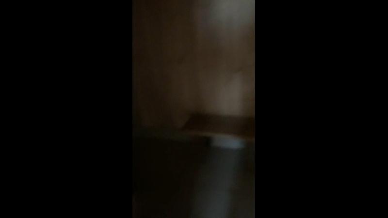 Видео от Александра Штейнли