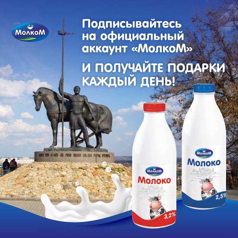 758 подписчиков по 14₽ за месяц для крупнейшего производителя молочной продукции в Поволжье «МолкоМ», изображение №3
