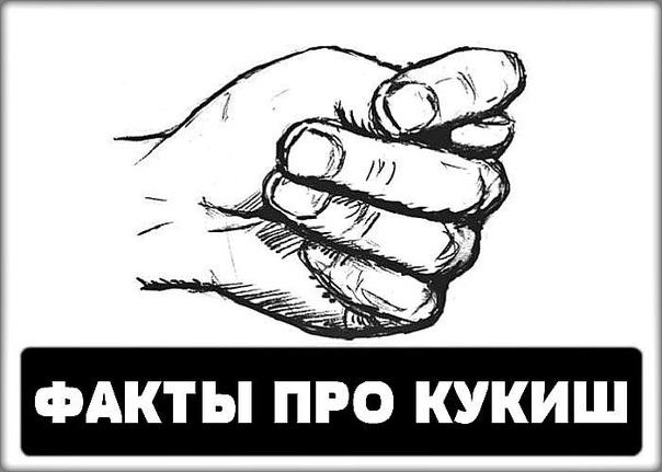Интересные факты про кукиш В словаре Ефремовой кукиш (он же шиш, дуля, фига) представляет собой сложенную в кулак руку с большим пальцем, просунутым между указательным и средним.В народе