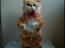 Поющий и танцующий кот игрушка 360p.mp4