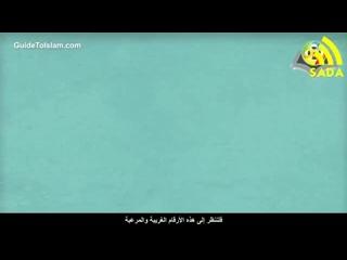 Полигамия - Многоженство в Исламе.mp4