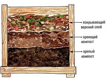 Как сделать свой компост быстро и грамотно? Все тонкости в одной статье!, изображение №5
