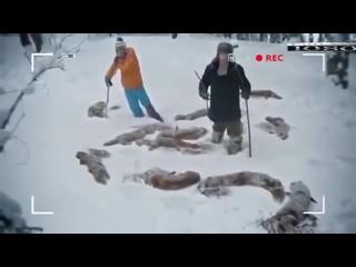 ХБ-2 Сезон. Самая ржачная серия!!!