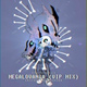 "Shirou Novaleinn - Megalovania (from ""Undertale"") VIP Mix"