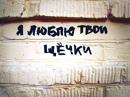 Персональный фотоальбом Артема Литвененко