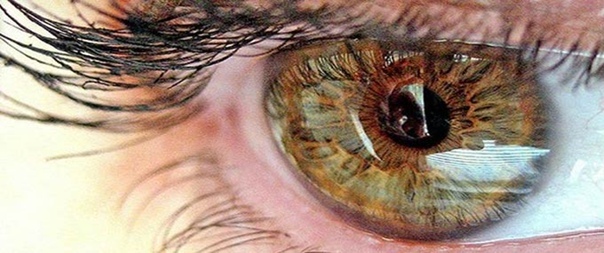 Гемералопия(куриная слепота): лечение народными средствами  Гемералопия (куриная слепота, ночная...
