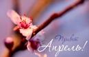 Доброго утра апреля желаем вам, люди! Пусть оно скрасит привычную суетность буден, И возродятся былы