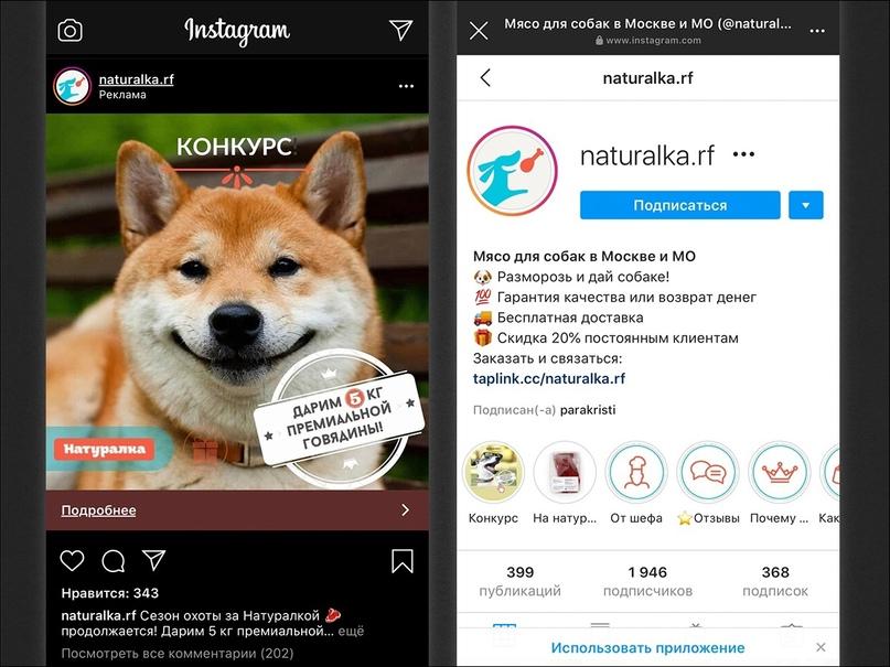 1300 продаж и 1500 подписчиков для интернет-магазина зоотоваров в Instagram, изображение №32