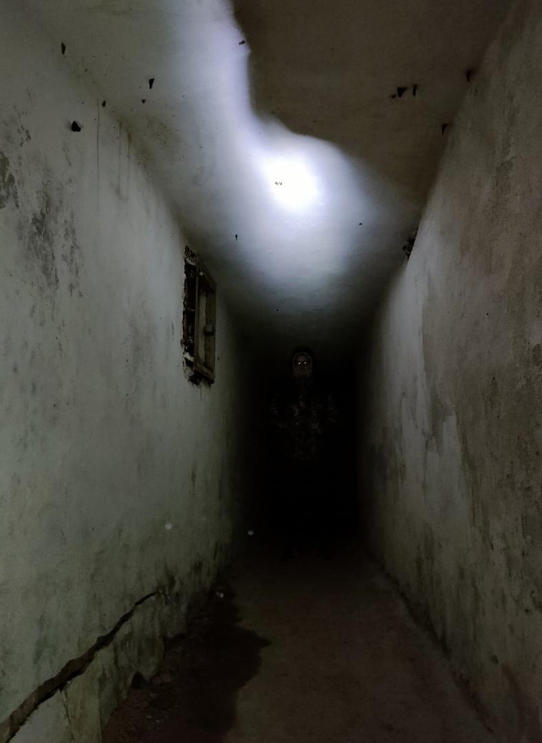 photo from album of Dark Elf №3