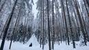 Гордеев Гавриил | Москва | 46