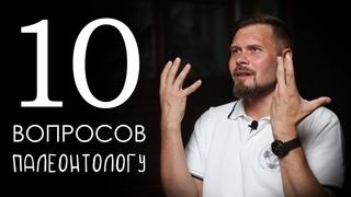 10 вопросов палеонтологу