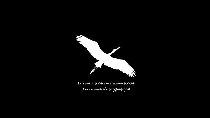 Журавль - Диана Константинова и Дмитрий Кузнецов