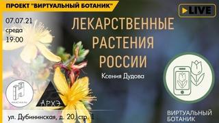"""Лекция """"Лекарственные растения"""" курса """"Ботанические заметки: полезные и опасные"""""""