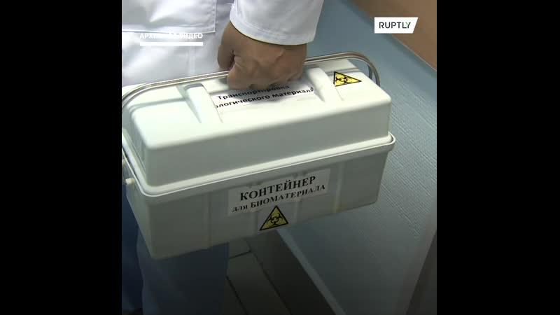 Россия представила вторую вакцину от коронавируса и готовится протестировать ее на 40000 добровольцах