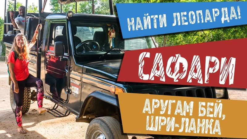 САФАРИ на джипах в поисках ЛЕОПАРДА в национальном парке КУМАНА на Шри Ланке Что Почем ENG SUB