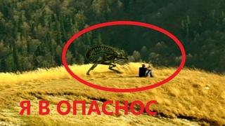 я заметил как парень дружит с пришельцем в горах !