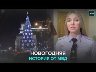 Калининградские полицейские раскрыли новогоднее преступление — Москва 24