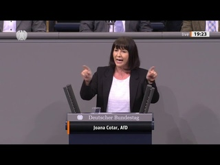 Bundestag. Verbrauchte Parteien in nur 4 Minuten völlig bloßgestellt! Joana Cotar, AfD