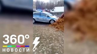 Водитель КамАЗа засыпал остановивших его полицейских песком