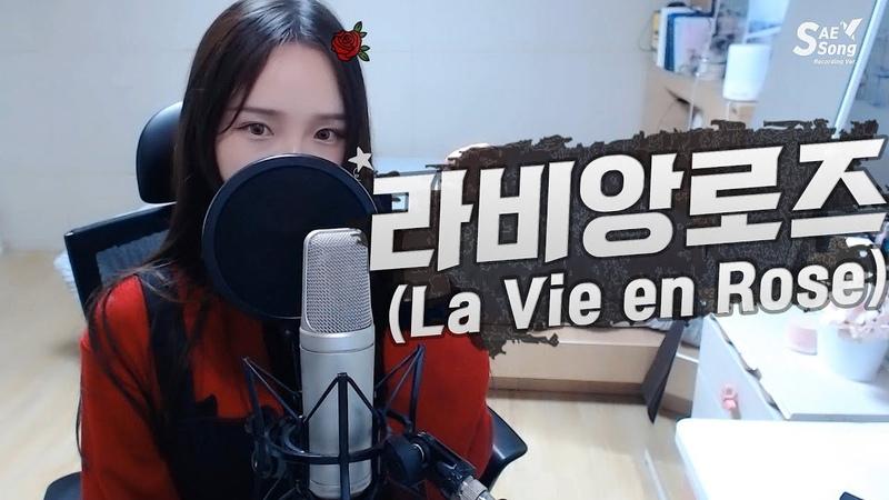 IZ*ONE 아이즈원 La Vie en Rose 라비앙로즈 COVER by 새송|SAESONG