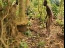 Вануату воскрешение традиций
