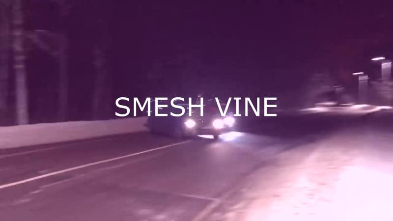 SMESH VINE 3