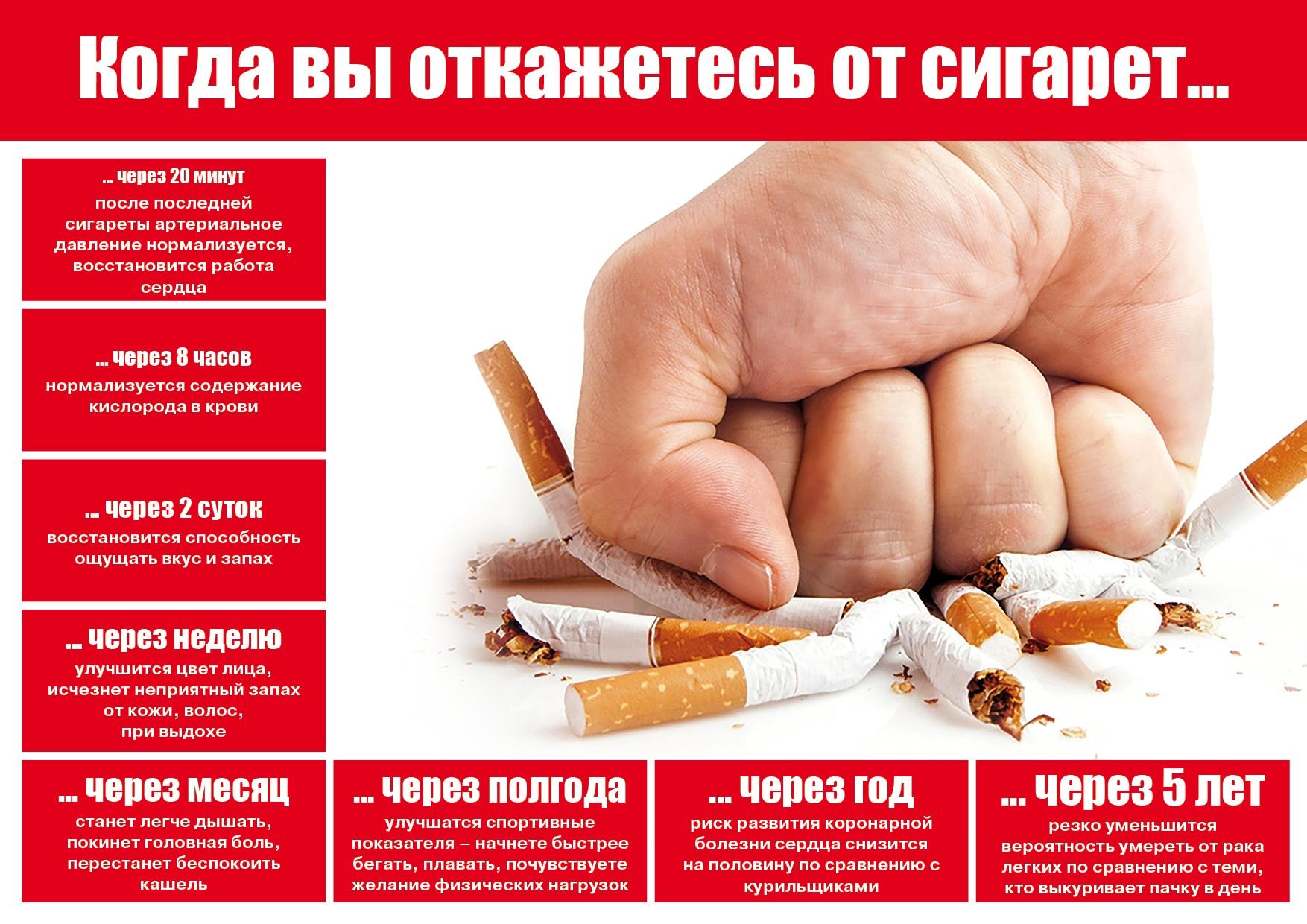 Табачные изделия в братске купить сигареты смоленск оптом